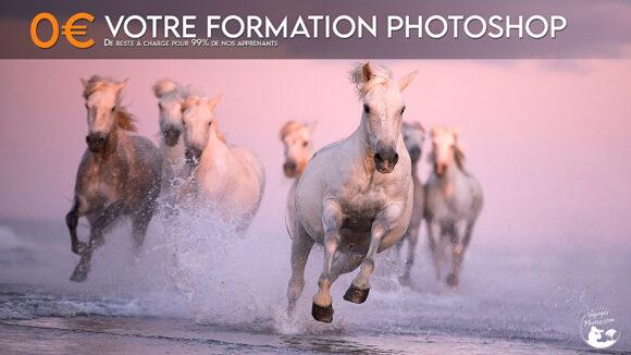 Formation Tosa Photoshop  du 29 au 30  janvier 2022